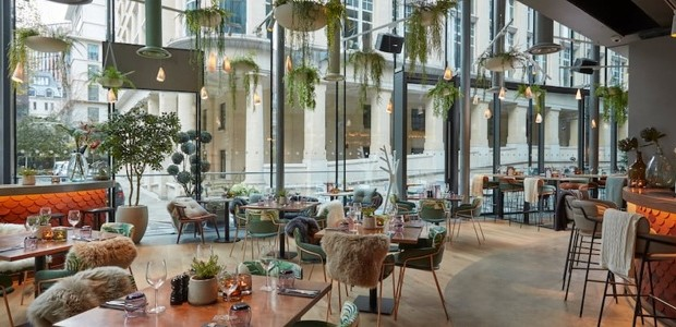 elegant and chic cafe