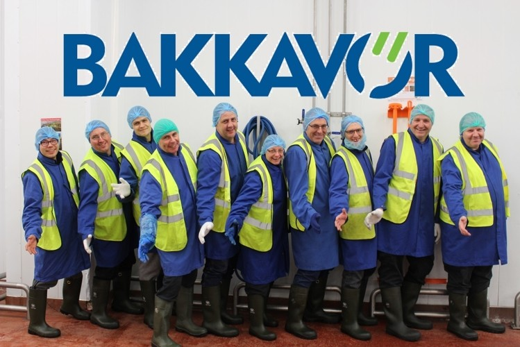 BAKKAVOR employees
